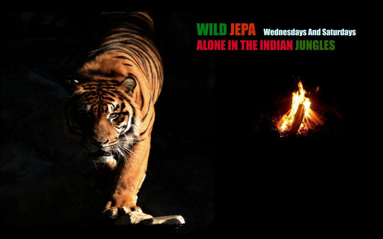 Wild Jepa