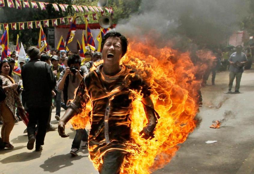 tibetan man new delhi